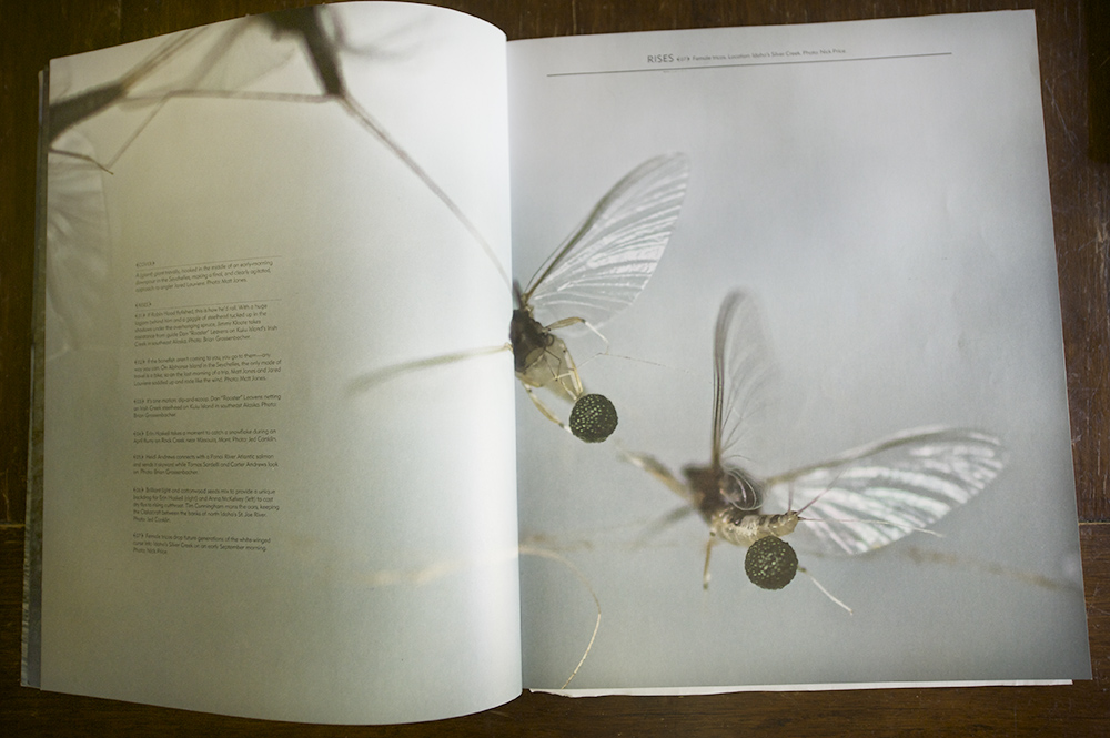 the flyfish journal issue 3.3 image.jpg