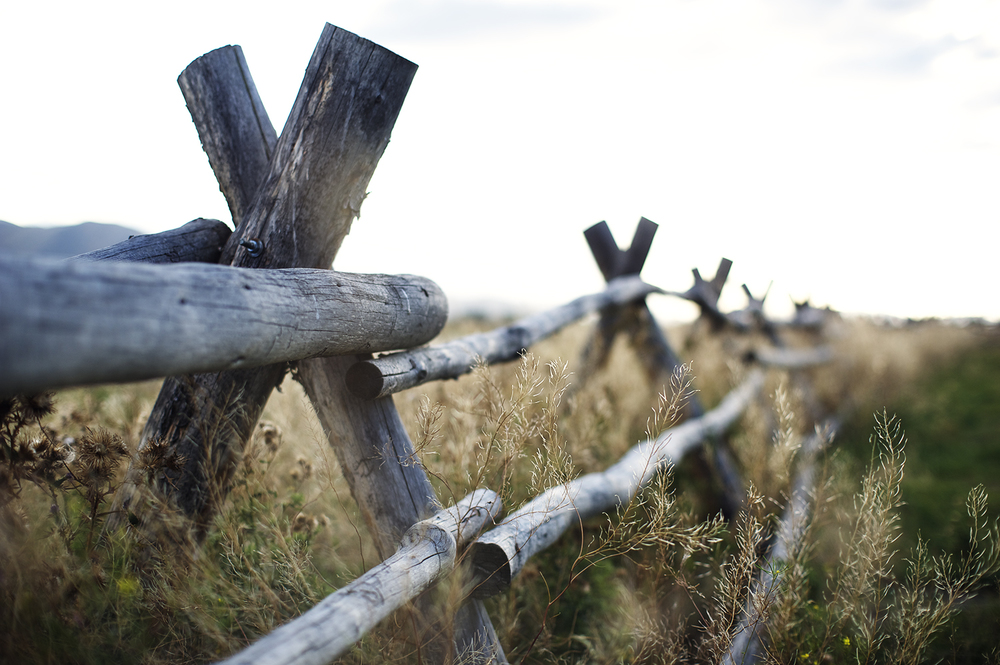 Split Rail Fence. Silver Creek, Idaho.