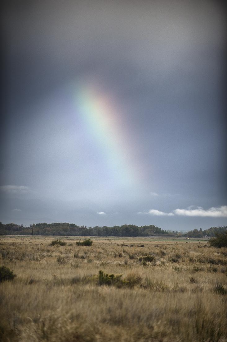 Rainbow. Silver Creek, Idaho.
