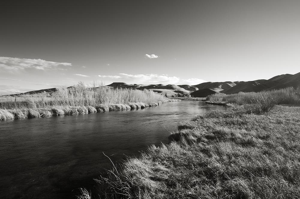 Fall. Silver Creek, Idaho.