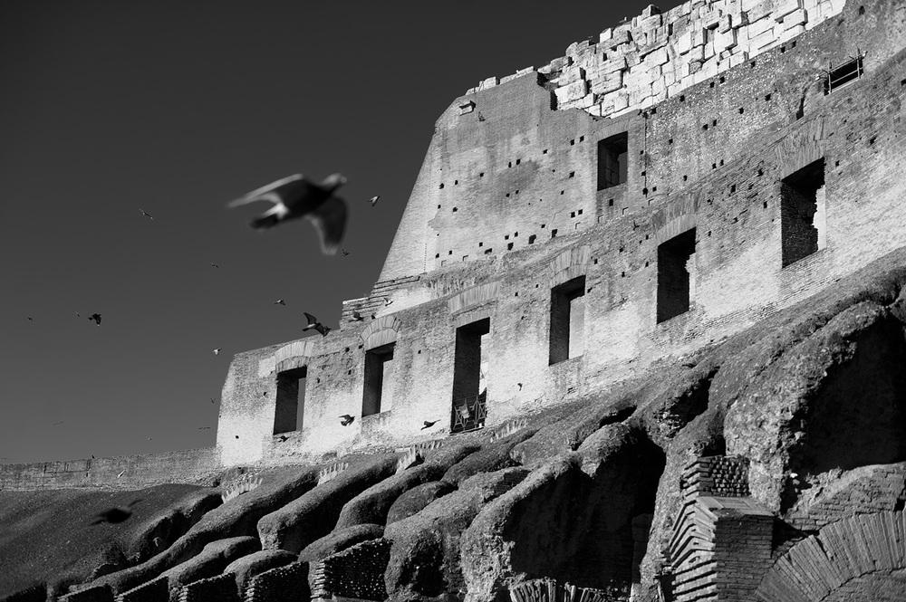 rome colosseum II bw.jpg