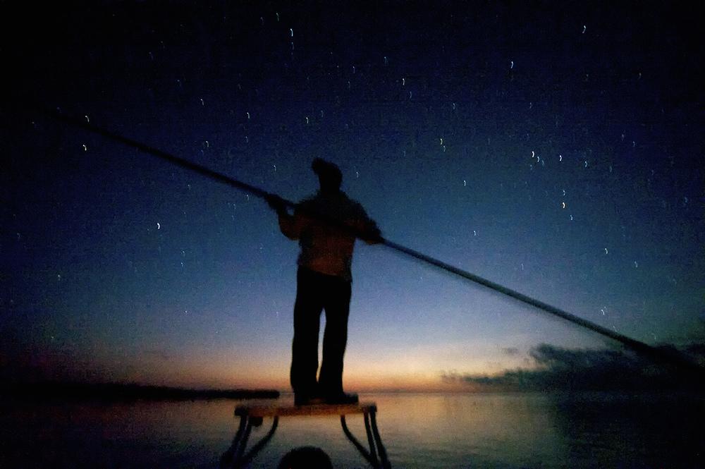 poling starlight titi.jpg
