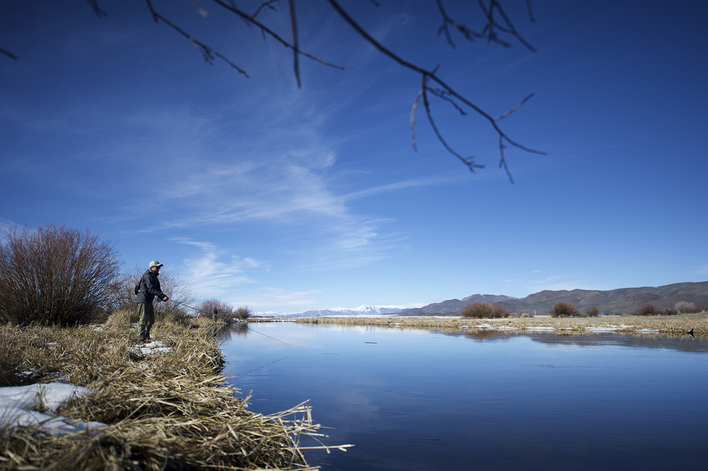 Silver Creek. February