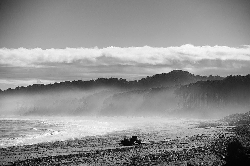 NZ Beach Fog Trees.jpg
