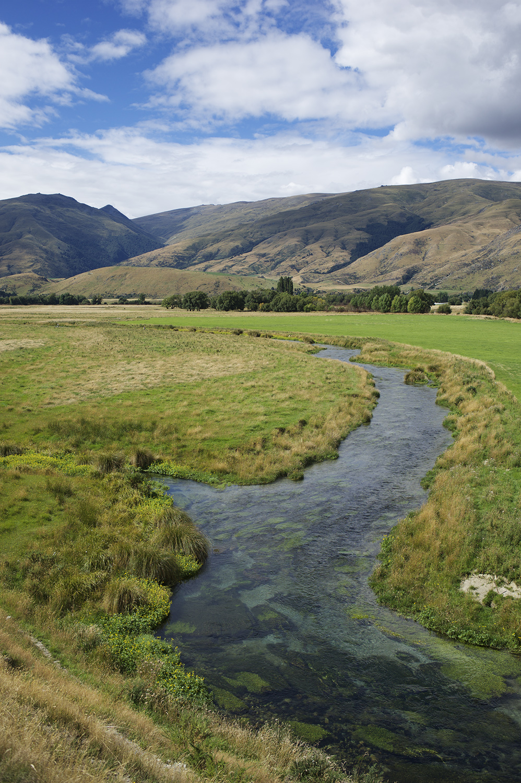 NZ Spring Cr Vert Water Scape.jpg