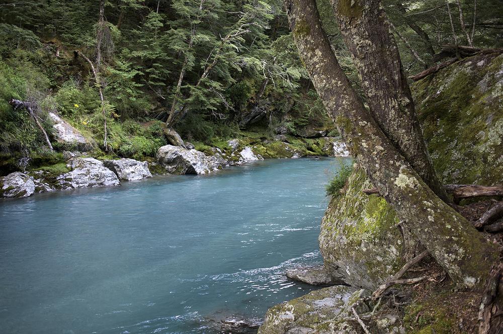 NZ River Turqoise Scape.jpg