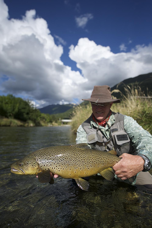 NZ Scott Brown Color Vert II.jpg