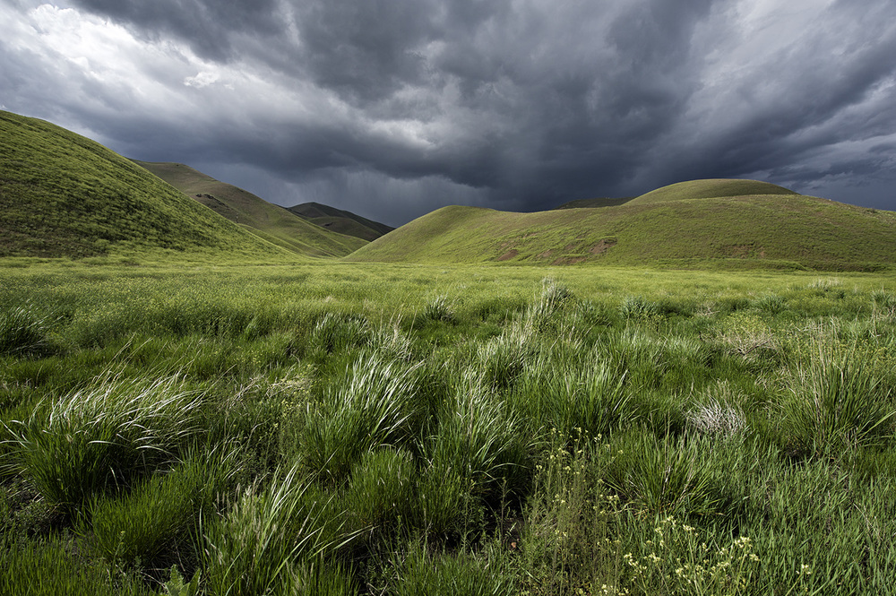 Hailey, Idaho. Late Spring.