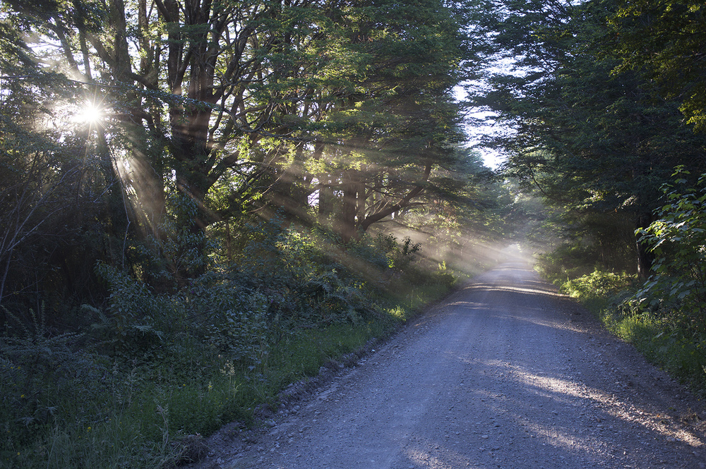 A typical Patagonia dirt road near Los Torrenes Lodge.