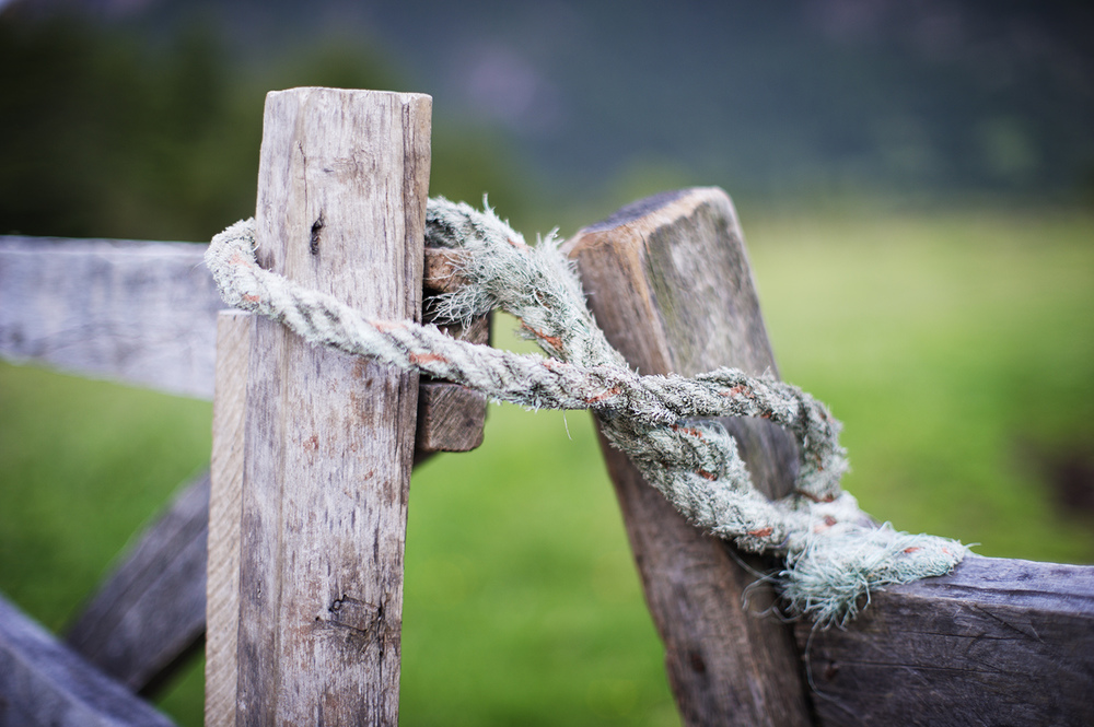 gate rope.jpg