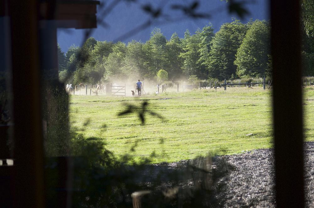 pelele from inside dust horses.jpg