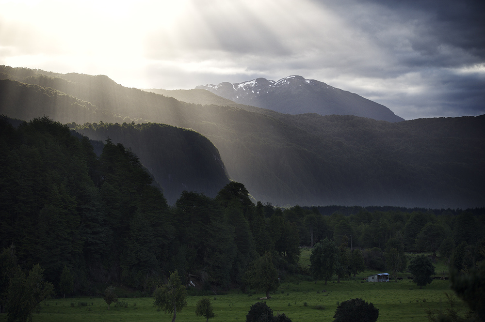rays simpson valley.jpg