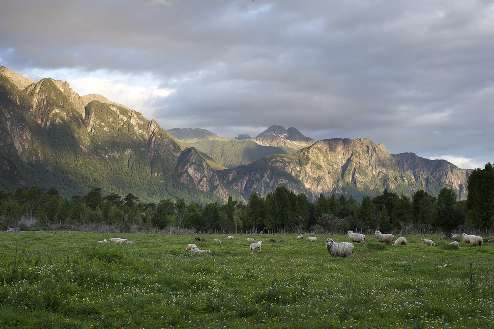 sheep mtns.jpg