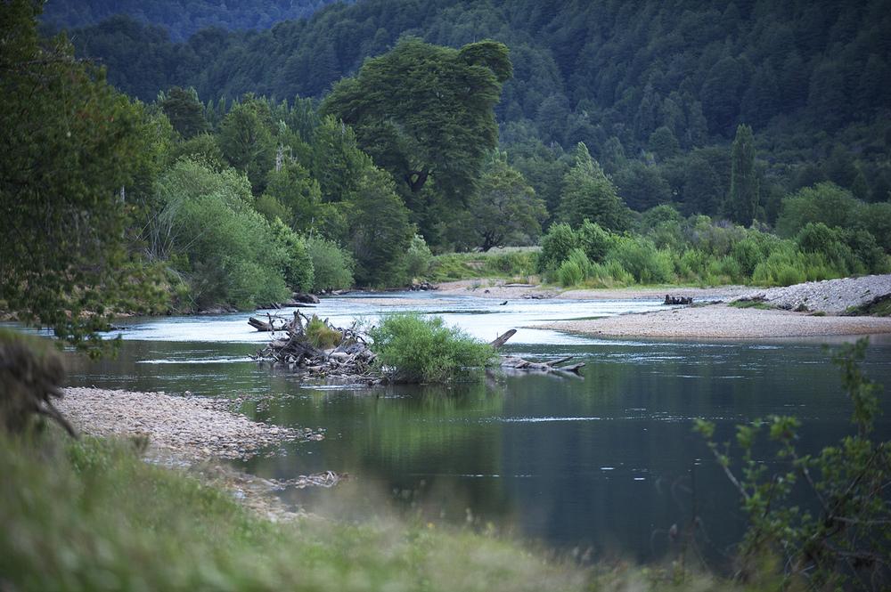 simpson river.jpg