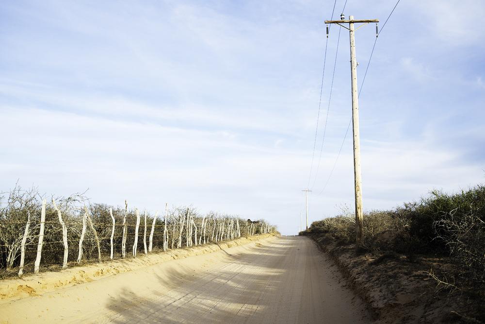 An East Cape dirt road.
