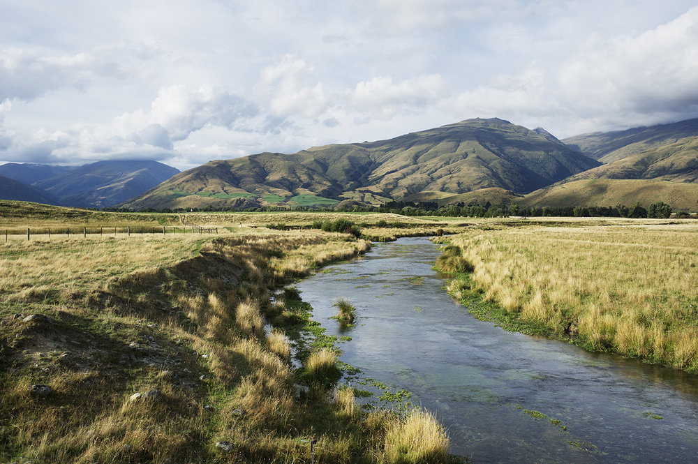 South Island Spring Creek