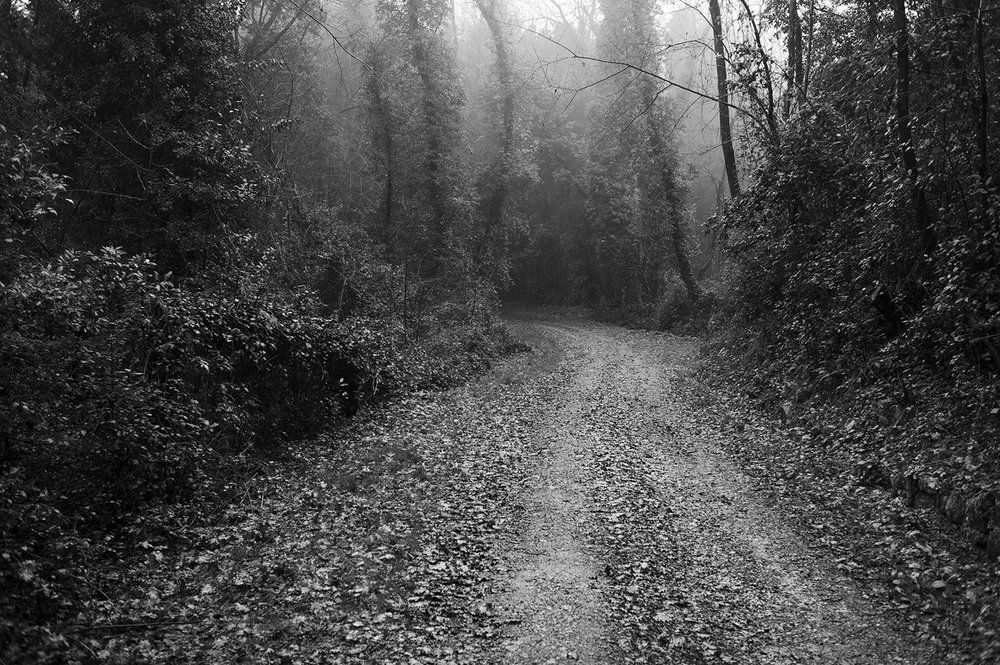 tuscan dirt road bw.jpg