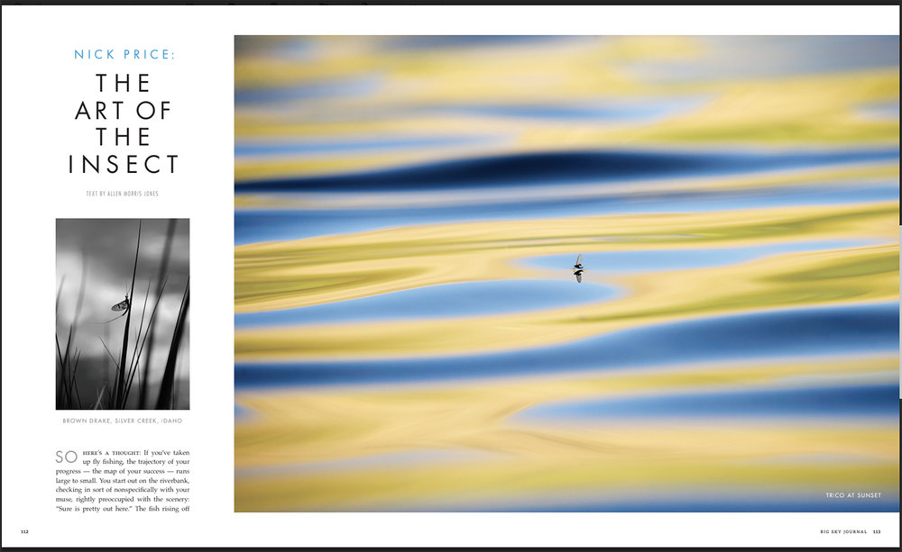 Big Sky Journal Feature on my macro photography. Spring 2018