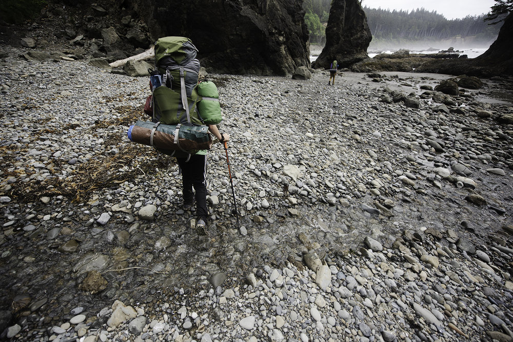 olympic coast backpacking.jpg