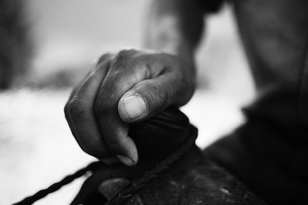 shepard hand.jpg