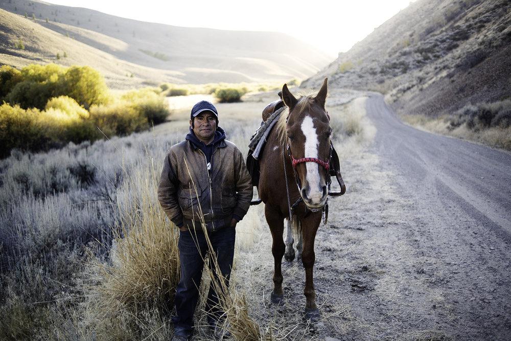 leonardo horse quigley oct 2018.jpg