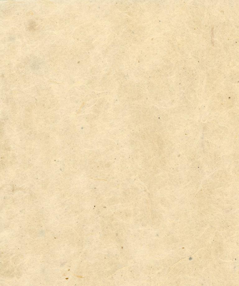 Papier Nepal 2.jpg