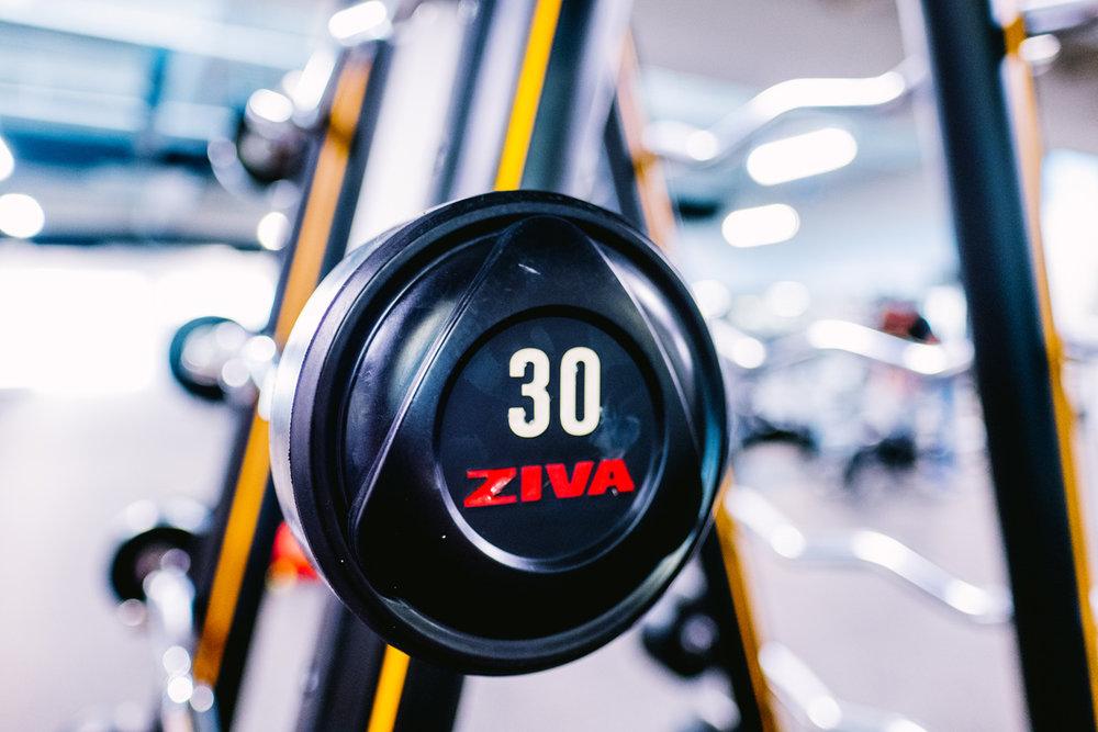 Fitness_Center_Free_Weight_web.jpg