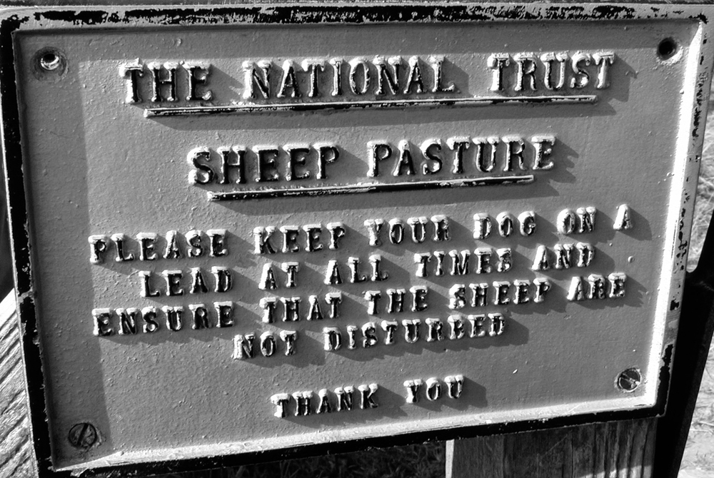 sheep_sign_cornwall_cbm.jpg