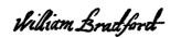 Autograph_WilliamBradford.jpg