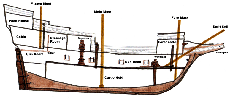 Cross Section Mayflowerhistory