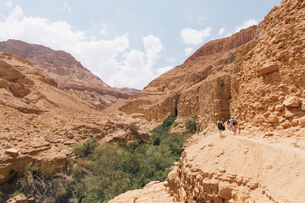 Valley hiking - This was our first proper experience of the deserts in Israel and the West Bank, and my first time ever being in a valley like this. It was incredibly hot, with nothing living except for along the river that ran through the valley.