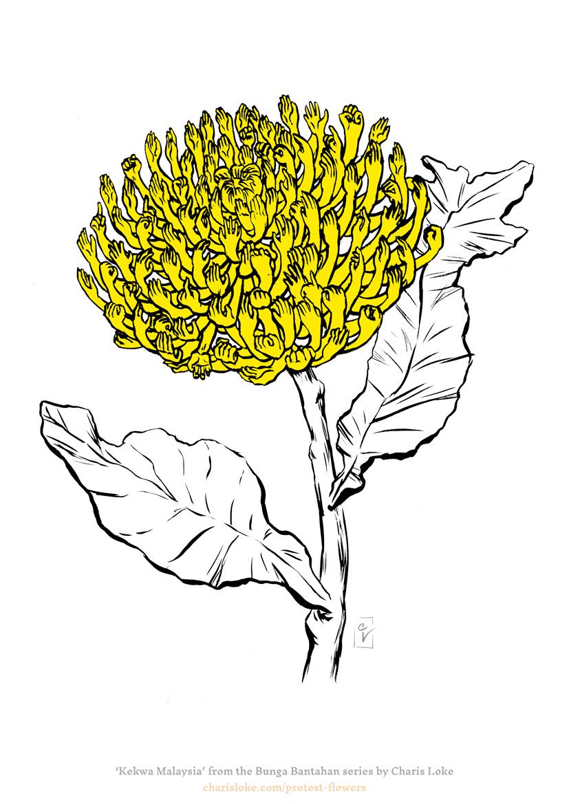CharisLoke_MalaysianChrysanthemum_Web.jpg