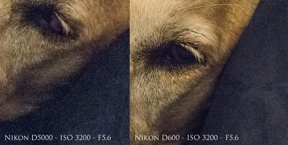 d600_nd5000.jpg