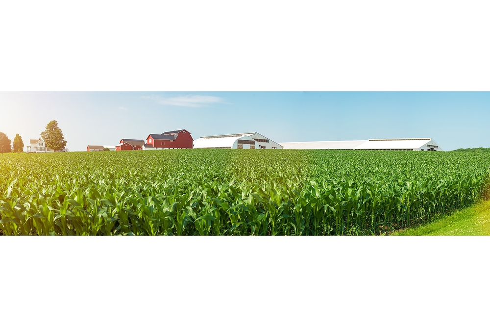 Hal-Silverman-Dairylea-Lawnhurst-Farm