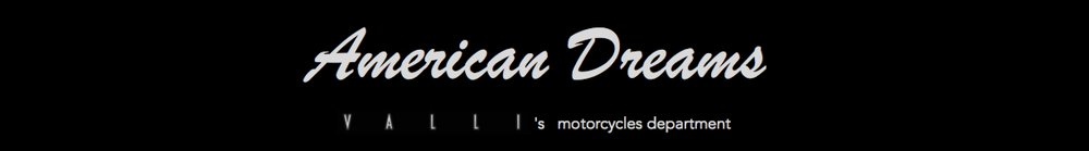 2003 883 sportster sidecar