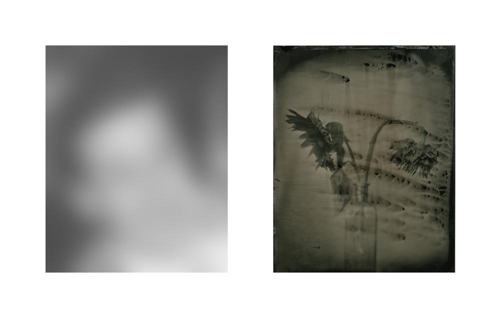 Daniel Duarte - That Which Remains - Thomas.jpg