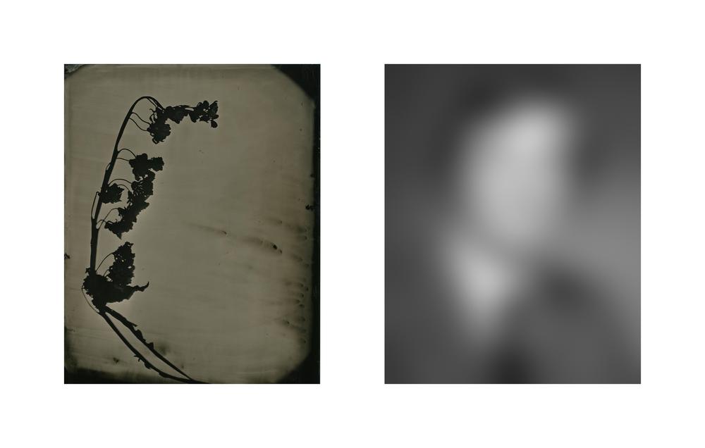 Daniel Duarte - That Which Remains - Steven.jpg