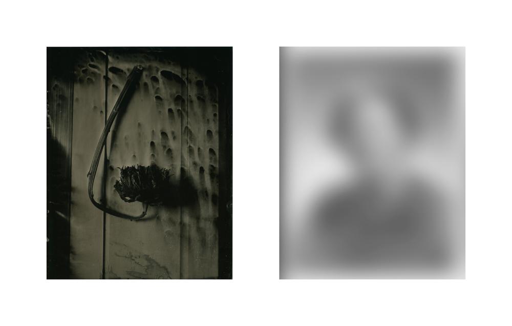 Daniel Duarte - That Which Remains - Gertrude.jpg