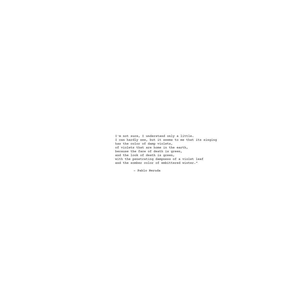 Neruda Script-1.jpg