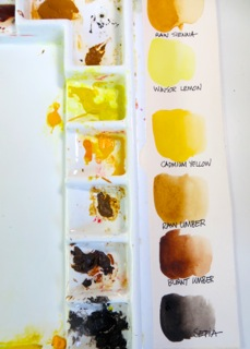 Watercolor Palette Layout 5