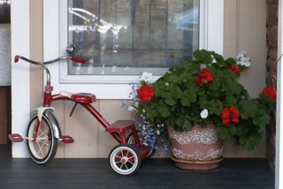 Tricycle and flower pot