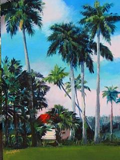 """Everglades Vista"""