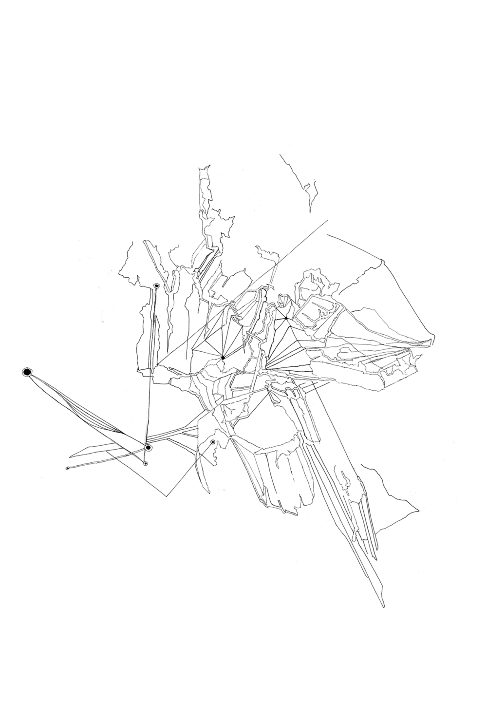 lucidstructure008|1800 copy.png