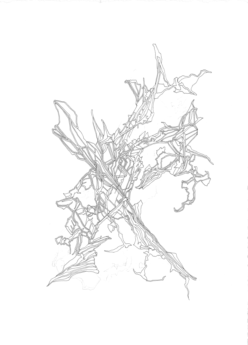 lucidstructure005|1800 copy.png