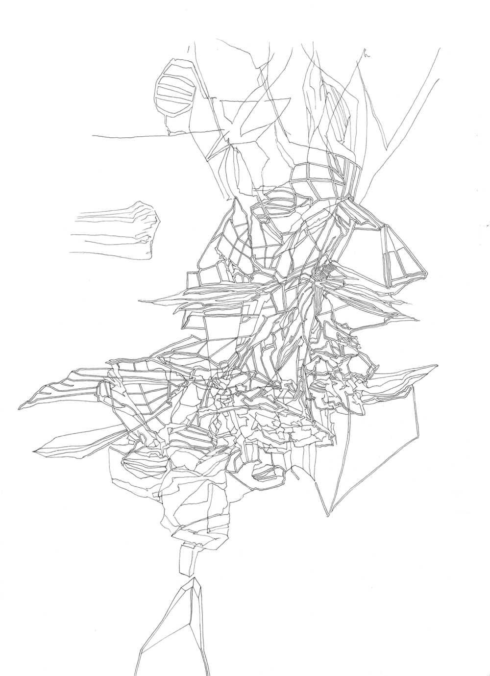 lucidstructure006|1800 copy.png