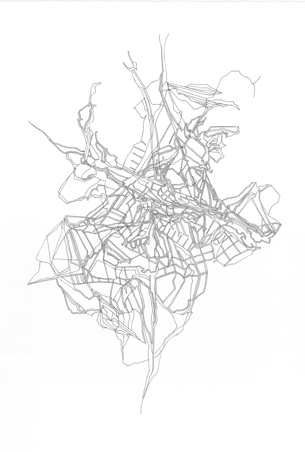 lucidstructure002|1800 copy.png