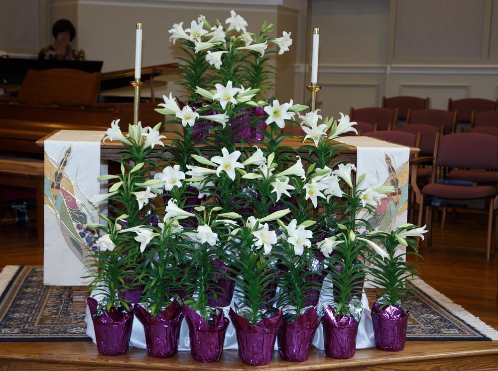 Easter Lilies 1.jpg