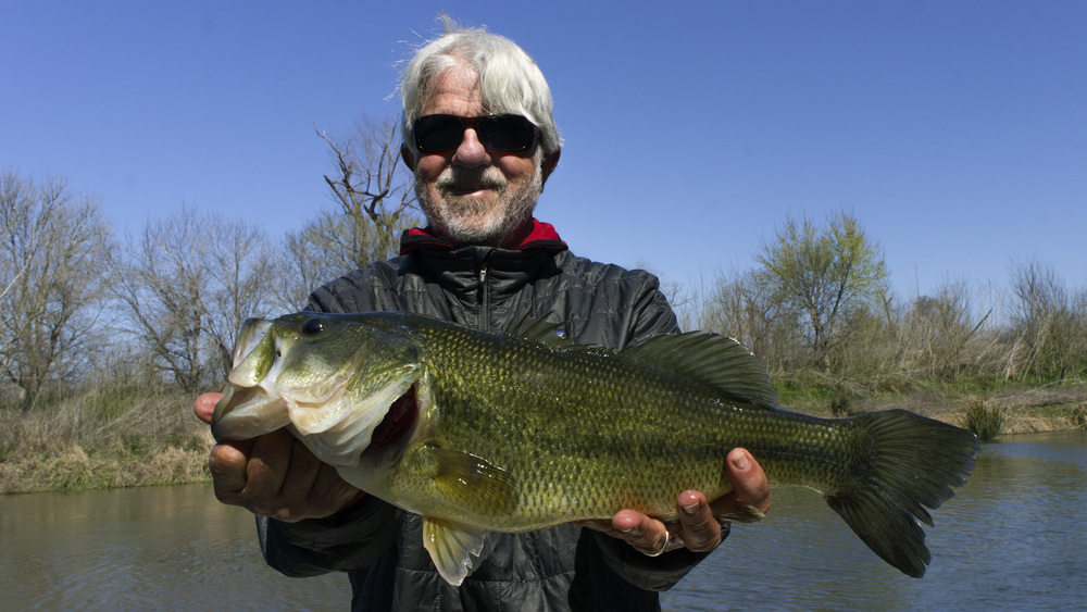 Mike Thompson with a huge Colorado River bass