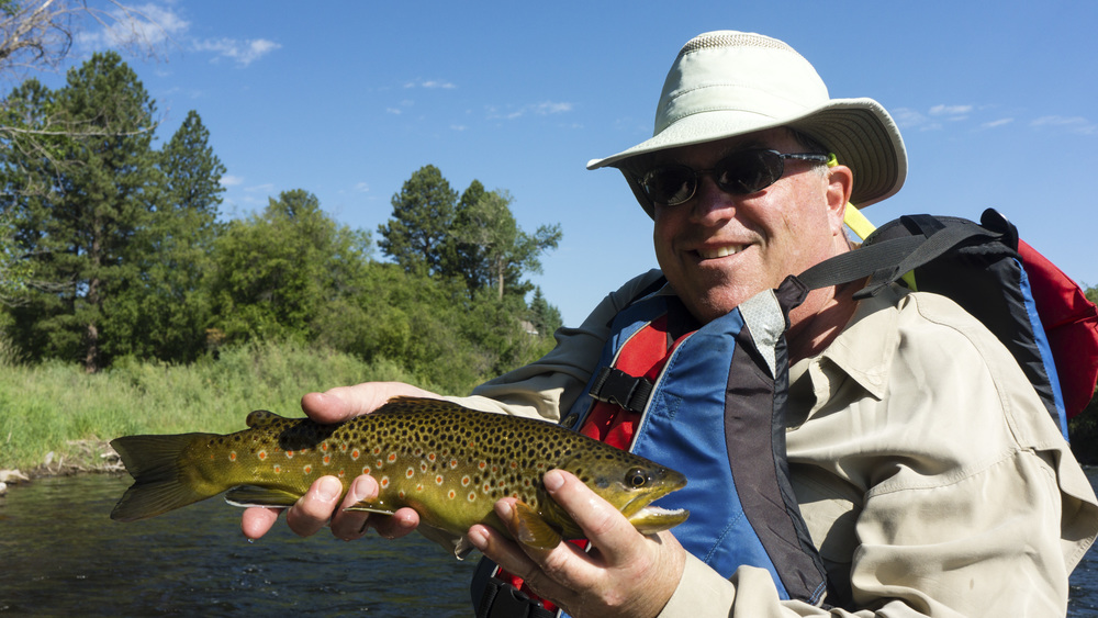 Roaring Fork Brown Trout
