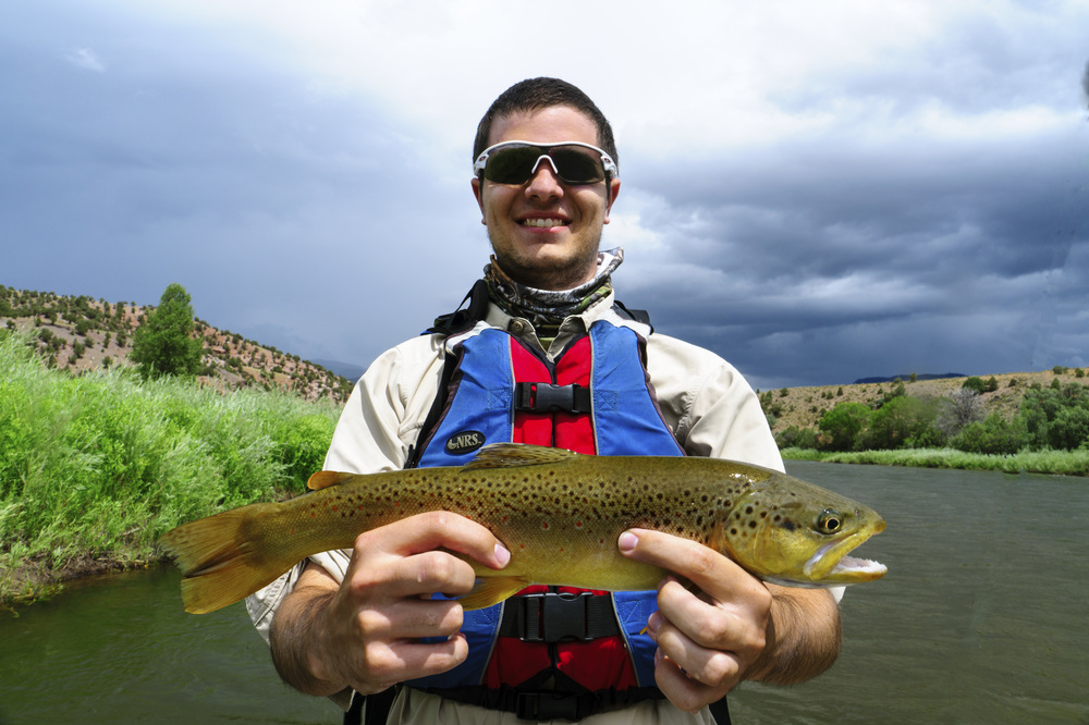 Colorado River Brown Trout